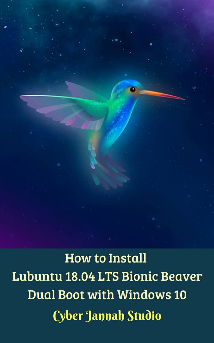 How to Install Lubuntu 18 04 LTS Bionic Beaver Dual Boot with Windows 10